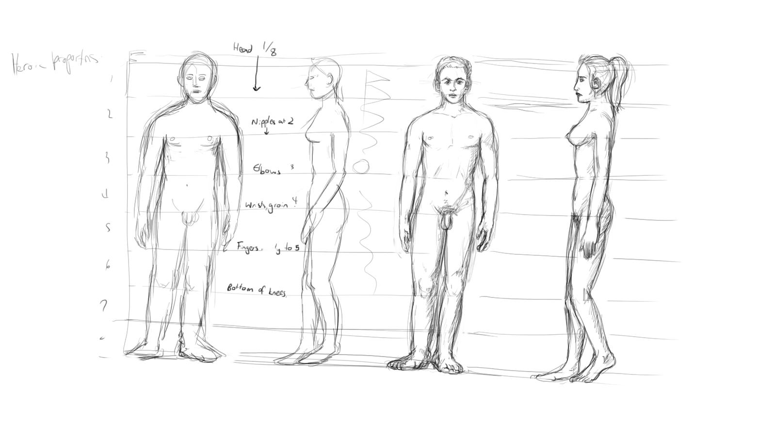 proportion sketches